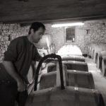 Vignoble Lobre - JC barriques travail